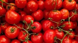 Турция может начать поставки томатов в РФ с октября