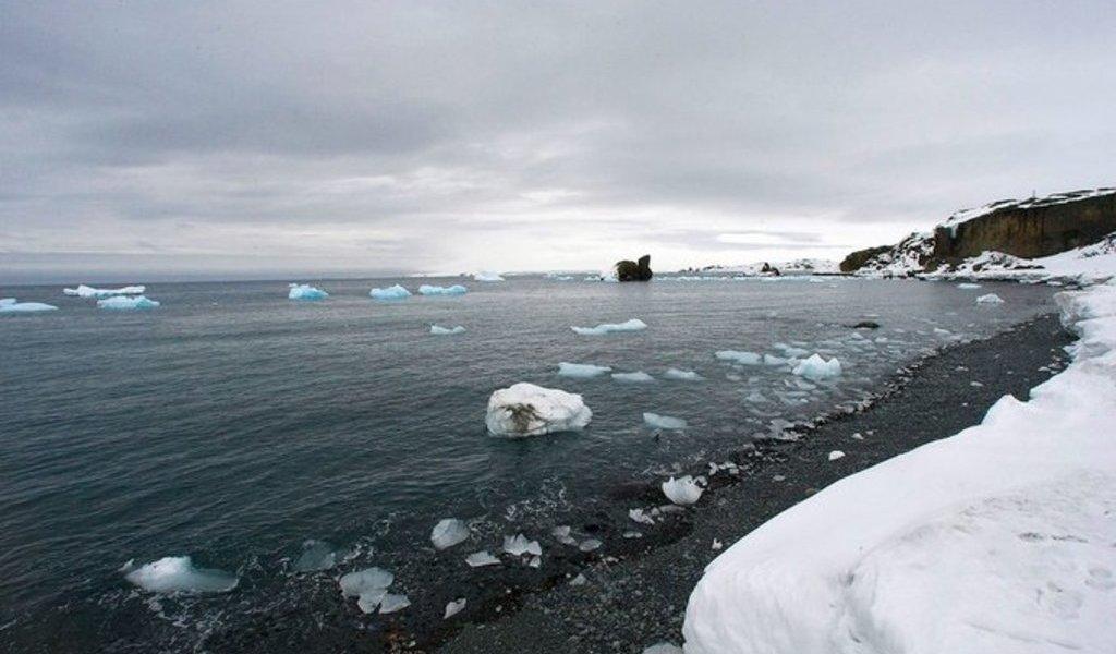 Sube a más de 20 grados temperatura en la Antártida