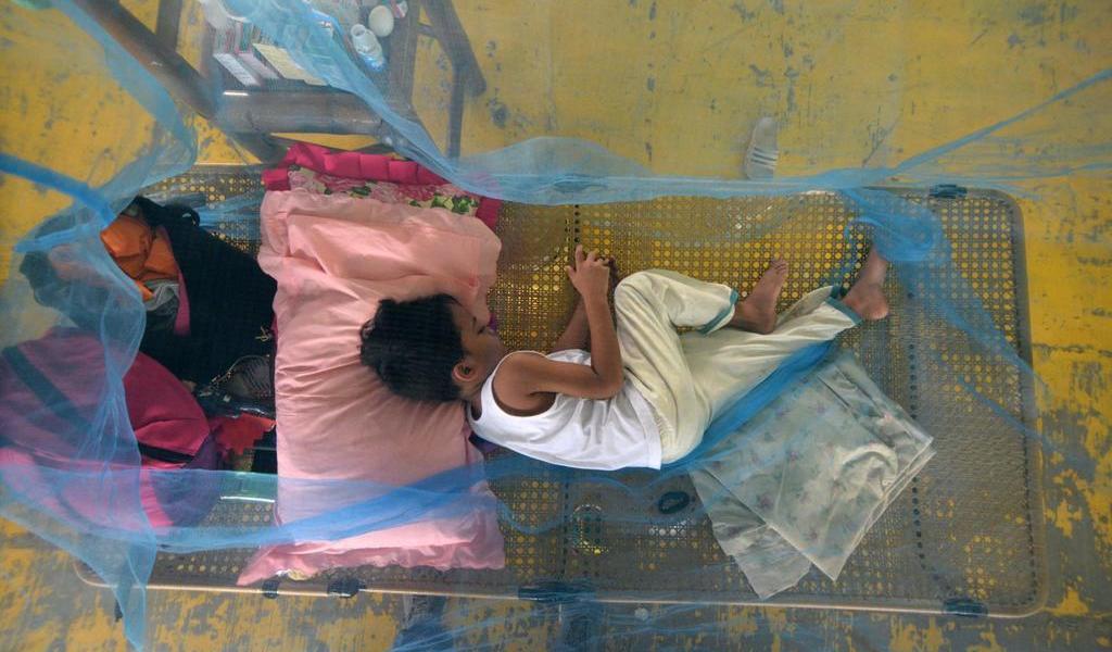 Crecen casos de dengue en América Latina