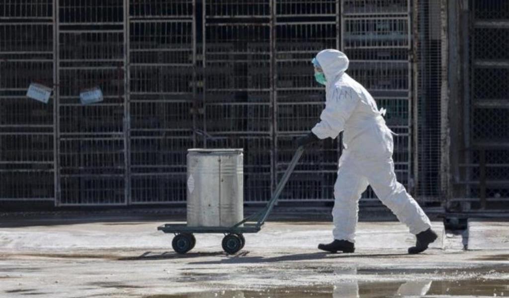 Ciudad de China emite alerta sanitaria por posible caso de peste bubónica