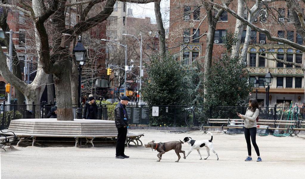 Reabre Nueva York salones de manicura y parques para perros