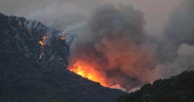 Avanza incendio forestal cerca de Los Ángeles