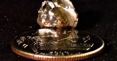 Gerente bancario descubre diamante en parque estatal de EUA