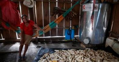 Obesidad y desnutrición le cuestan a Guatemala un equivalente al 16 % del PIB