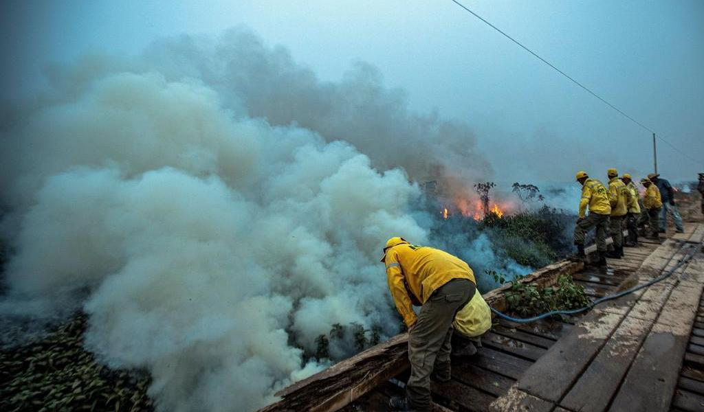 En 2020, se disparan 120 % los incendios en Amazonía brasileña