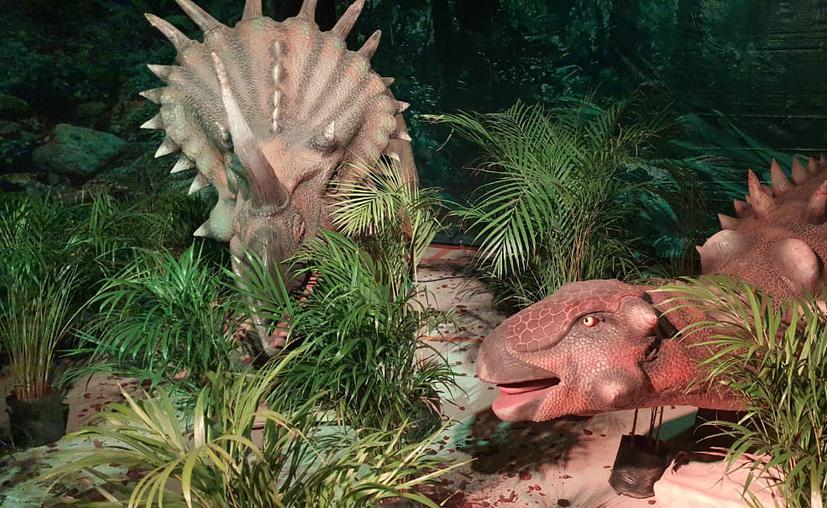 """Ya puedes convivir con """"dinosaurios reales"""" en Cancún"""