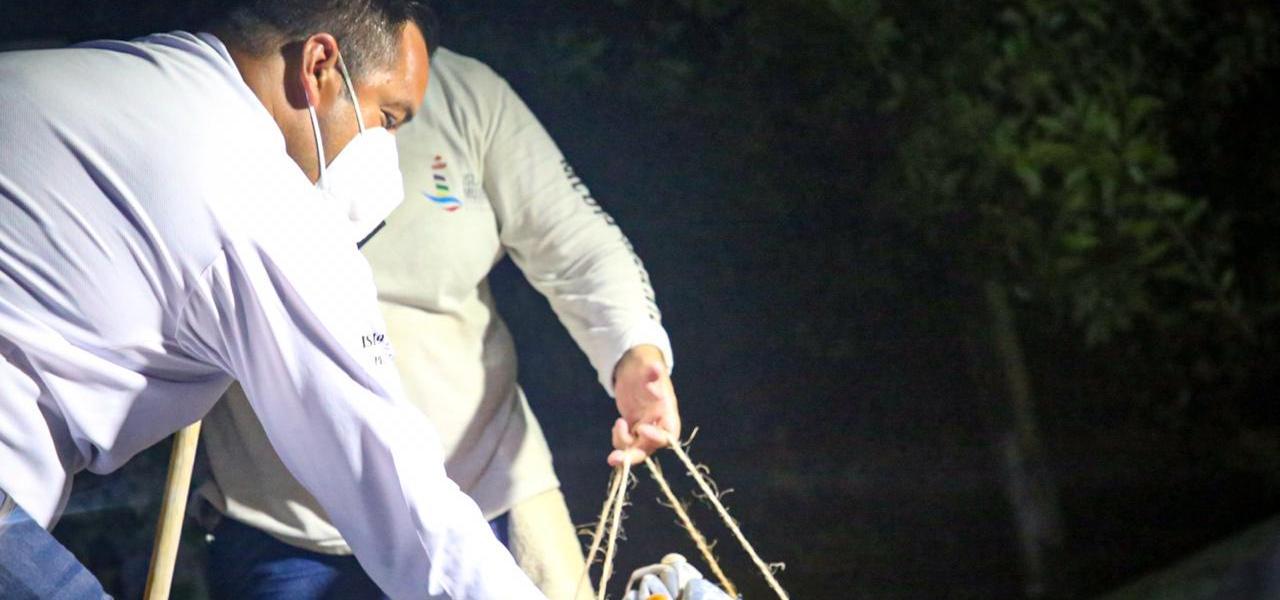 INICIA MUNICIPIO DE ISLA MUJERES CUIDADO Y PROTECCIÓN AL CANGREJO AZUL