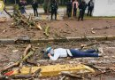 Le cae árbol mientras manejaba bicicleta en Chapultepec