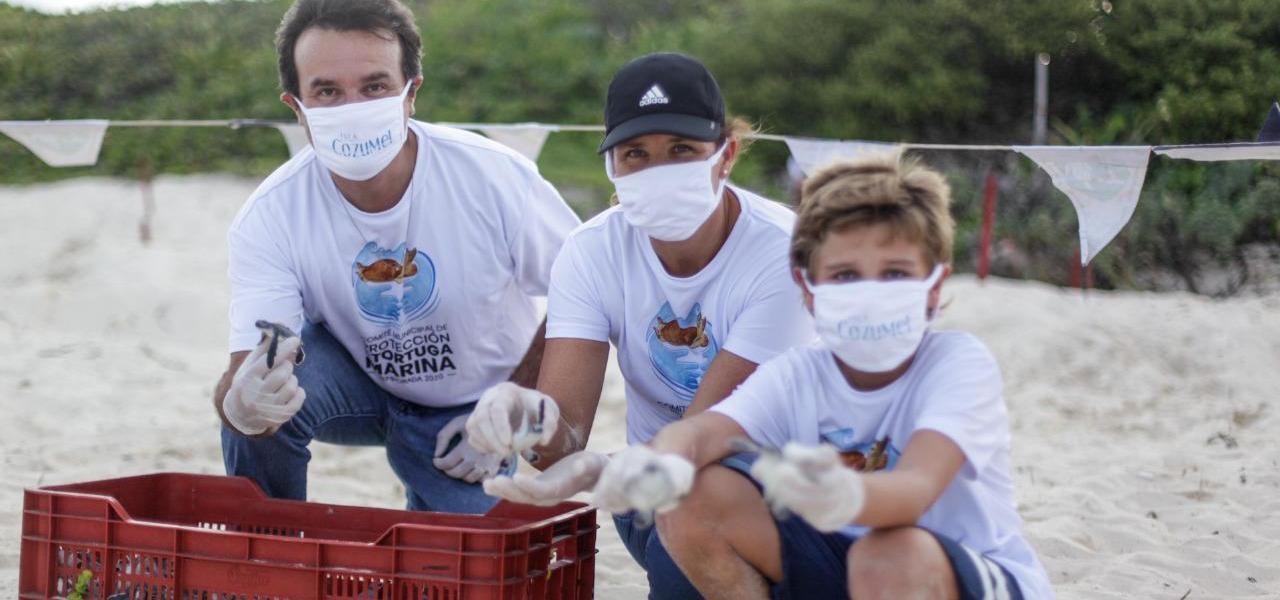 Durante la pandemia por Covid-19, impulsa Pedro Joaquín la protección y conservación de la tortuga marina en Cozumel