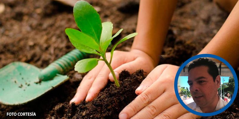 Fomentan el desarrollo agropecuario en las casas de Cancún