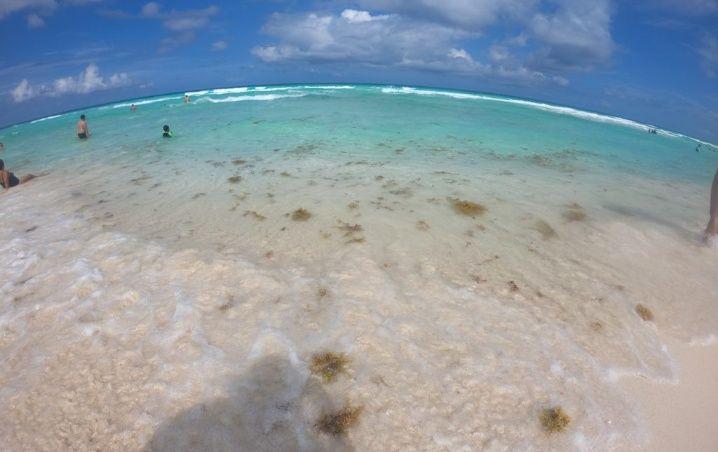 Cancún: Playas Limpias de Sargazo hoy 4 de marzo de 2020
