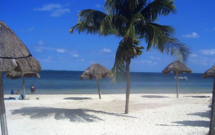 Cancún: Playas limpias de sargazo hoy 11 de marzo de 2020