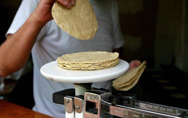 Descartado incremento al precio de tortilla en Quintana Roo