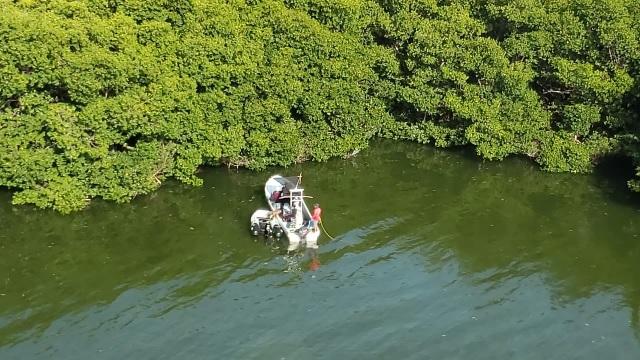 Encuentran a dos turistas extraviados en manglar de Cancún
