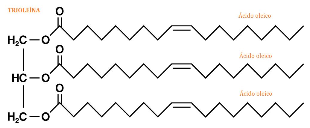 Trioleina