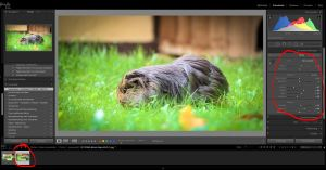Videos in Lightroom bearbeiten