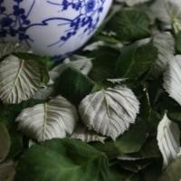 Selbst gemachter Tee mit Brombeerblättern
