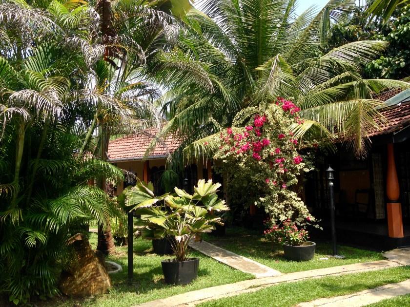 Bungalowanlage mit Dschungelpflanzen im Flower Garden Hotel