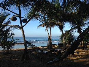 Mangrove Beach Chalets in Tangalle