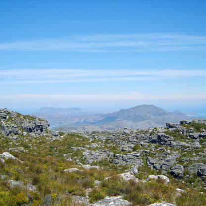 The path on the plateau