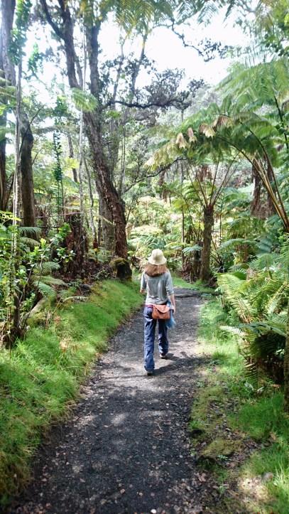 Volcano Park Big Island