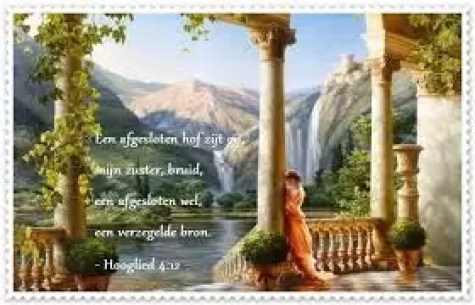 Hooglied 4