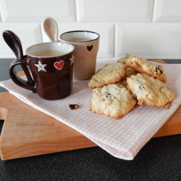 Havermout cranberry koekjes