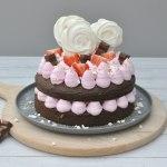 Chocolade fudge taartje met Brand New Cake
