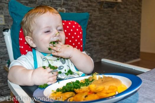 9 maanden oud spinazie, aardappels, appelmoes