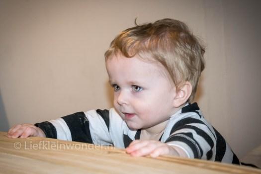 13 maanden oud - alles door de kamer slepen