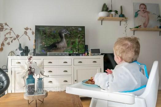 Jayden 15 maanden en 1 week  oud - peuter dreumes Broodje aarbeienjam eten en eendjes kijken op tv
