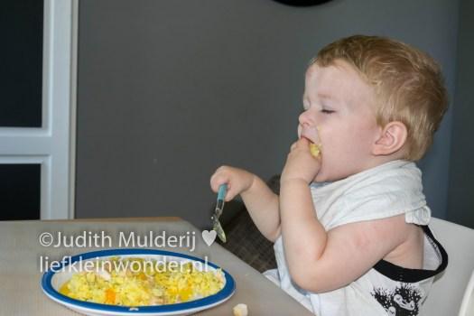 Jayden 18 maanden en 1 week oud - rijst met kipkerriesalade
