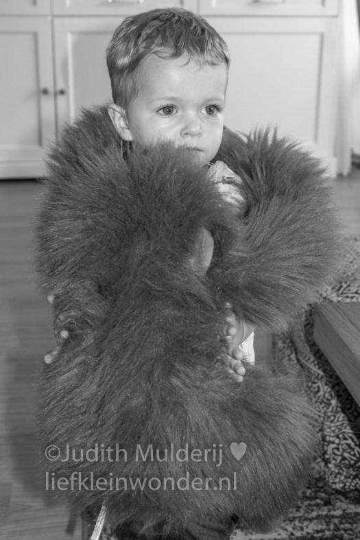 Jayden 20 maanden oud peuter dreumes - knuffels knuffelen met mama's aap
