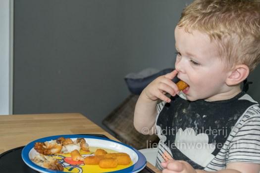 Jayden 19 maanden en 2 weken oud peuter dreumes - Vis eten vis friet kibbeling en kabeljauw
