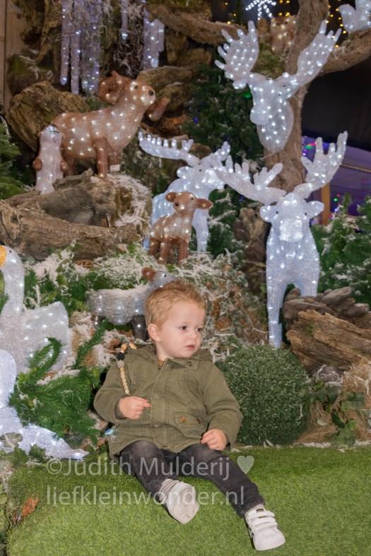 Jayden 22 maanden oud peuter dreumes mamablog - Kerstshow tuincentrum de boer