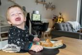 jayden 23 maanden en 3 weken oud mama blog - Olifant met geluid