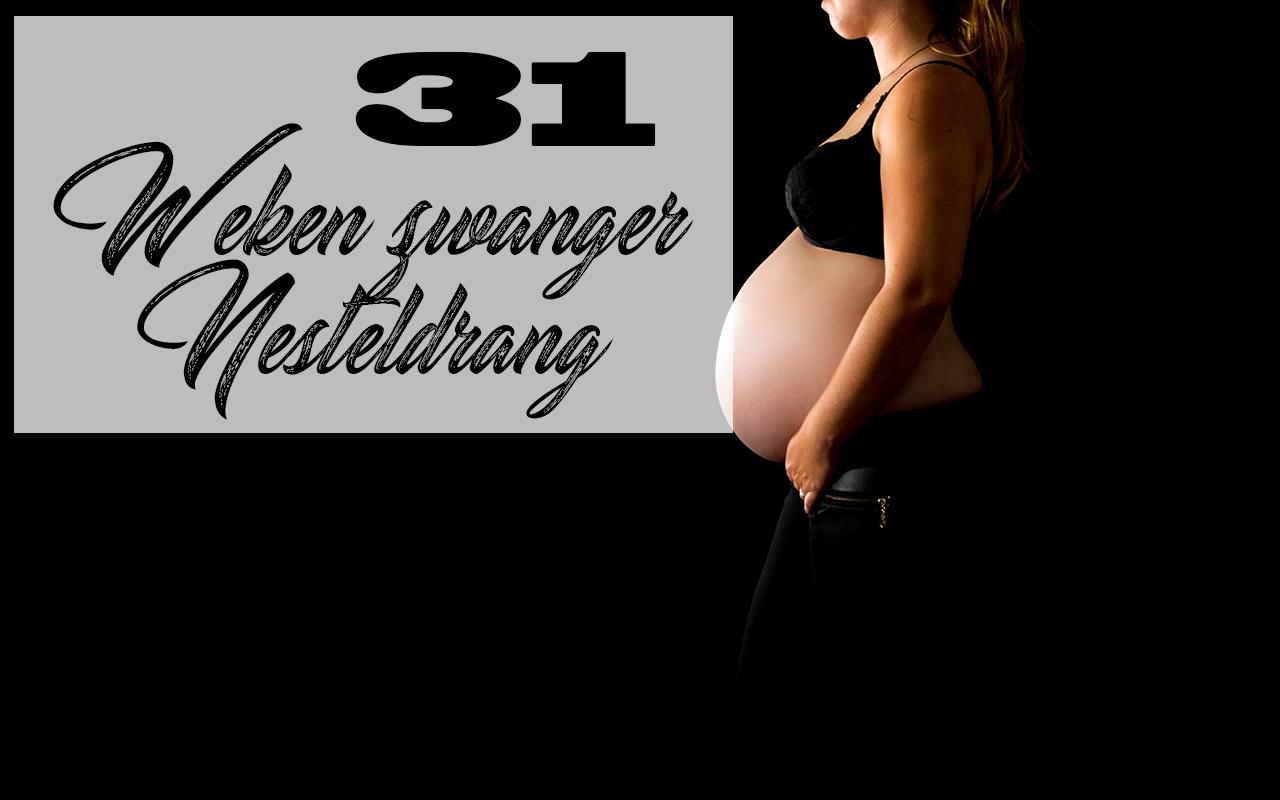 31 Weken zwanger buikfoto 31 weken mama blog baby zwangerschap kwaaltjes nesteldrang harde buiken zwaar
