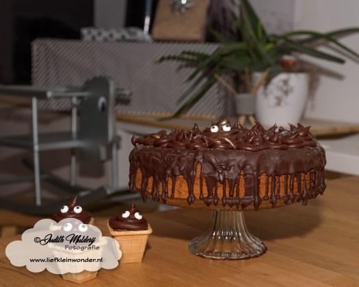Finley 1 jaar oud eerste verjaardag cadeaus mama blog review www.liefkeinwonder.nl poep taart