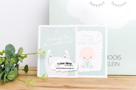Ouders van nu zwangerbox 5 weken zwanger week 6 mama blog zwangerschap review  wat zit er in blokker milestone kaarten baby