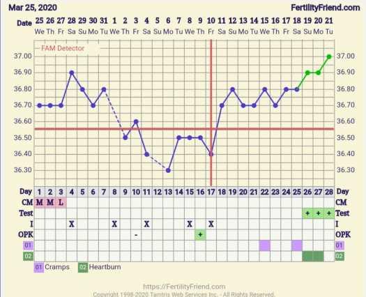 Fertillity friend tremperatuur kaartje zwanger