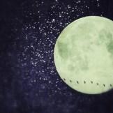 お金持ちや芸能人は必ず知っている?新月と満月の願い事