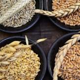 食べるだけで痩せ菌が増える?スーパー大麦とは