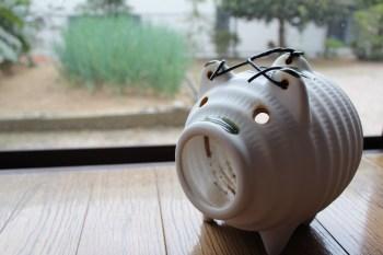 豚の蚊取り線香