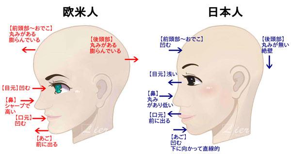 横顔の比較