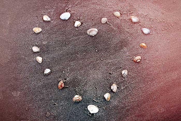 Hart van schelpen op het strand
