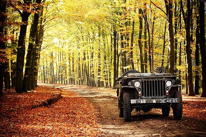 Willys Jeep tijdens herfsrit tussen de herfst kleuren