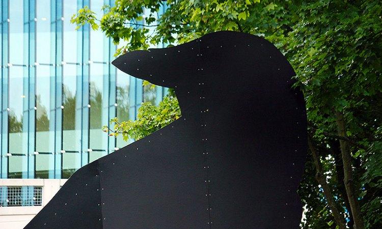 Keigrote kunst Zwarte Kraai