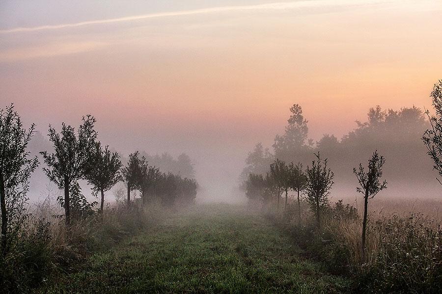 Fotoserie: Fietsen in alle vroegte
