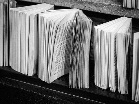 Eenzame boeken in de regen