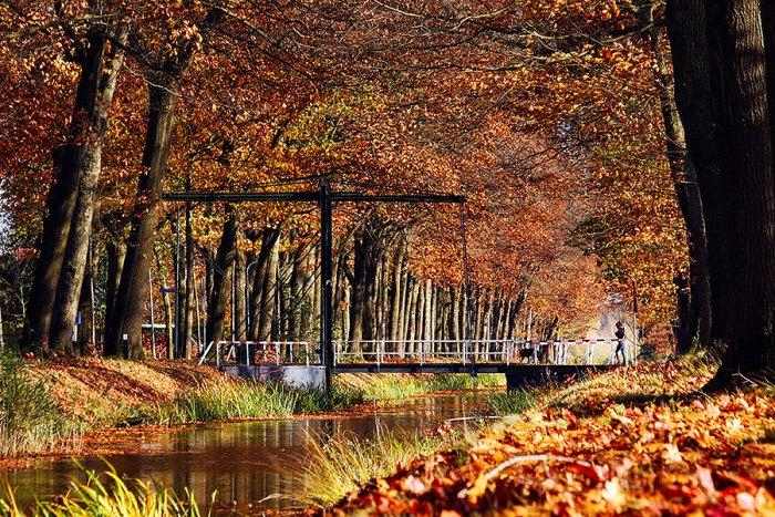 Fotoserie: Genieten van de herfst